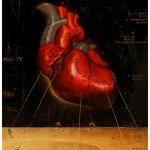Rory Kurtz - Anatomy
